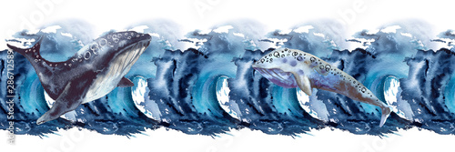Frame with sea whale. Isolated on a white background.