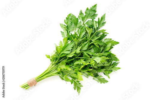 Fotomural  bunch of fresh parsley isolated on white background
