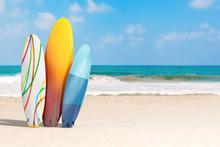 Summer Vacation Concept. Color...