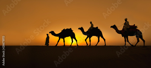 Fotografering  Rajasthan travel background - Three indian cameleers (camel drivers) with camels silhouettes in dunes of Thar desert on sunset