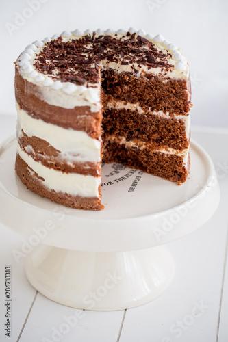 Fotomural  mud cake