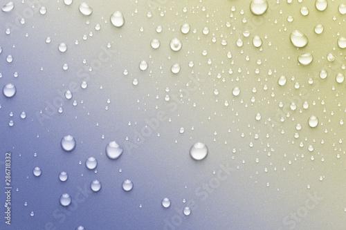 Obraz na plátně  Drops of water on a color background