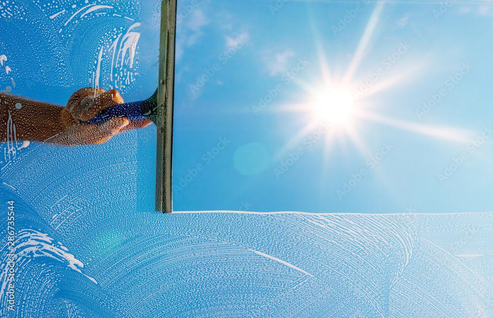 Fototapeta Fensterputzer putzt Fenster mit Schaum und Abzieher im Sonnenlicht