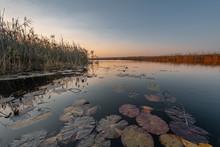 Mirror Like Lake Along The Cuando River
