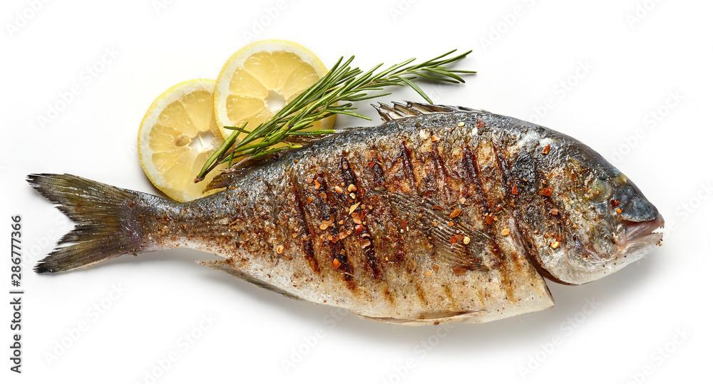 Fototapeta grilled fish on white background