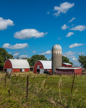 Barns And Corn Fields Of South Dakota