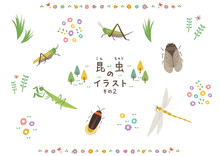 昆虫のイラスト2