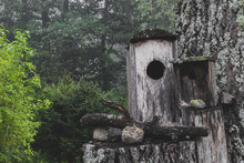 Old Nesting Boxes