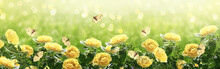Summer Bright Background With Many Yellow Fluttering Butterflies And Blooming Fantasy Yellow Roses Flowers Blossom And Glowing Sparkle Bokeh