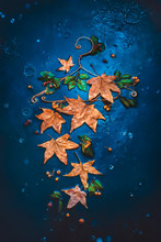 Autumn Dress Made Be Fallen Leaves And Raindrops On A Wire Hanger. Creative Autumn Flat Lay With Copy Space