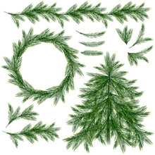 Christmas Set Useful For Holiday Decorations And Border. Spruce Tree, Branches, Wreath And Border Isolated On Wite Background. Vector, EPS 10.