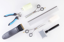 Professional Grooming Equipment For Animals, Flat Lay