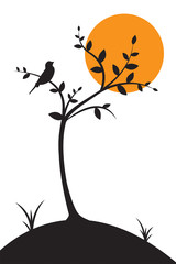 Panel Szklany Do salonu Bird silhouette on tree on sunset or sunrise vector, illustration, Wall Decals, Wall art work. Bird on branch Design, Bird Silhouette. Nature Art Design, poster design isolated on white background