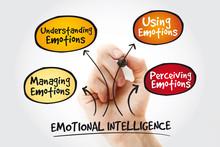 Emotional Intelligence Mind Ma...