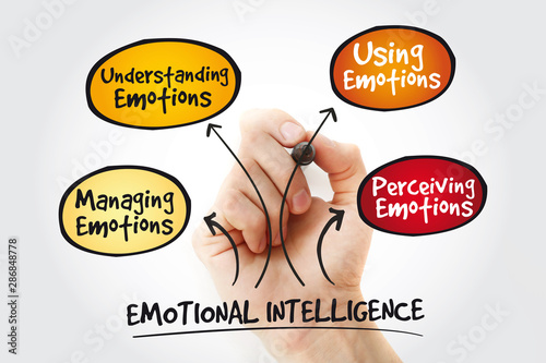 Cuadros en Lienzo Emotional intelligence mind map with marker, business concept