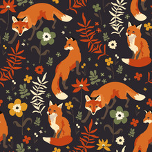 Foxes Walk In Grass And Flowers