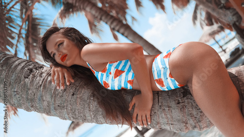 Fotografia, Obraz Sexy beautiful woman with long hair lying on a palm tree