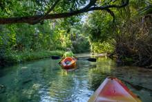 Kayaking On Juniper Springs Creek, Florida