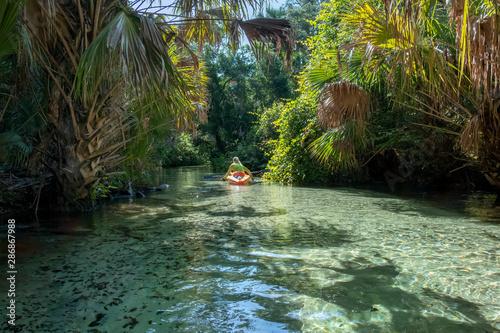 Autocollant pour porte Rivière de la forêt Kayaking on Juniper Springs Creek, Florida
