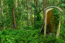Abandoned Restroom In A Forest.