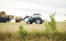 Tractor Loading Of Bales Of Hay On A Cargo Trailer. Harvesting In Autumn. Feed For Animals. Truck.