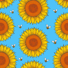 Sunflower And Bee Seamless Pattern. Hand Drawn Background. Colorful Vector Illustration. Cute Design With Sunflower.