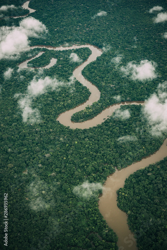 Aerial view of Amazon river Canvas Print