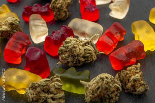 Fototapeta Cannabis edibles, medical marijuana, CBD infused gummies and edible pot concept theme with close up on colorful gummy bears and weed buds on dark background obraz