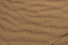 Close Up Of The Desert Sands In Mendoza, Argentina. A Tiny Insect Trail Can Be Seen.