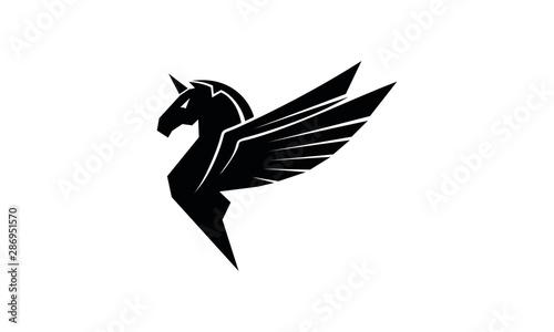 Photo Pegasus vector