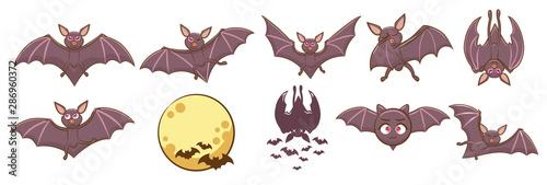 Photo  bat vector set graphic clipart design
