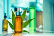canvas print picture - CBD OIL glass bottle, tincture and hemp leaf on a background of a medical laboratory. Concept of legal medicine