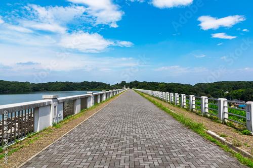 (埼玉県-風景)狭山自然公園の遊歩道風景3