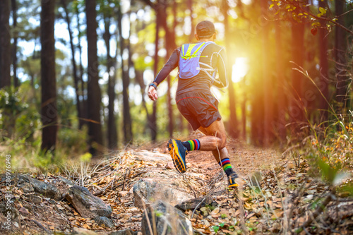 Fotografie, Obraz A man Runner of Trail and athlete's feet wearing sports shoes for trail running