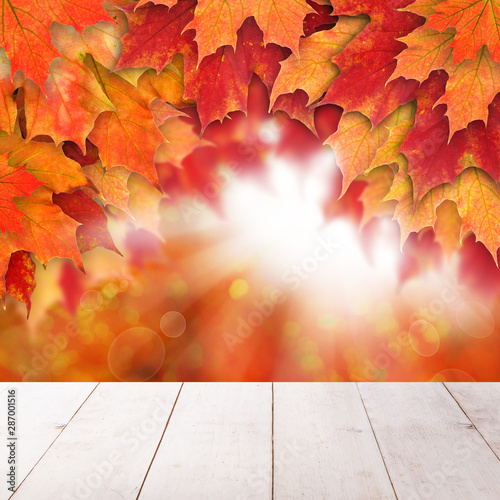 Fall background with red autumn maple leaves and abstract sun li - 287001516