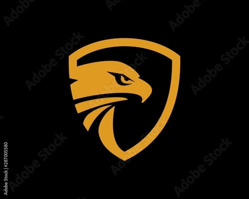 Photo Eagle Shield