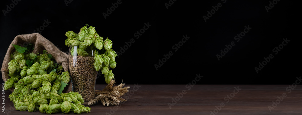 Fototapety, obrazy: Beer glass with malt and fresh green of hops on dark wooden table. Empty space for text. Black background