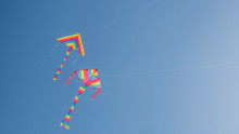 Two Kites Soar In The Blue Clo...