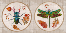 Embroidery Collection. Insects...