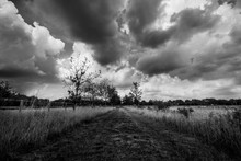 A Dutch Nature Landscape With A Threatening Sky In Black And White