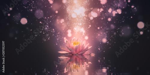Montage in der Fensternische Lotosblume meditation abstract background with lotus flowers