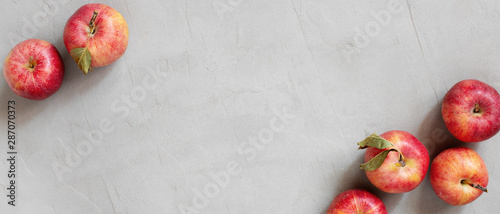Fototapeta Banner with red fresh juicy apples on the grey table