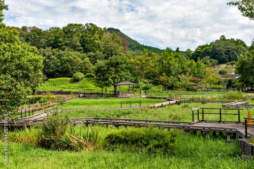 Tuinposter Wijngaard View of Arima-fuji public park in Sanda city, Hyogo, Japan