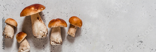 Wild Mushrooms, Porcini Tablou Canvas