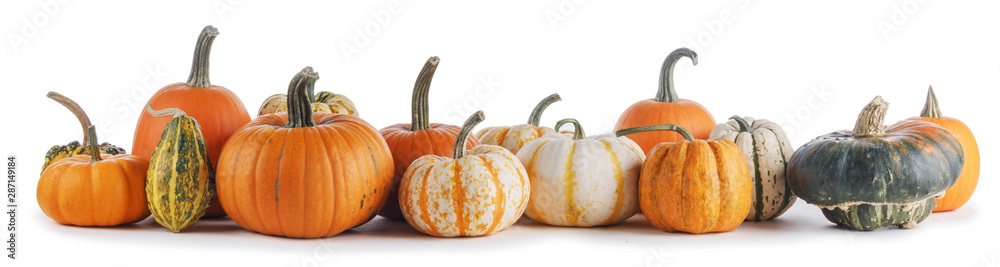 Fototapety, obrazy: Assortiment of pumpkins on white