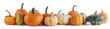 canvas print picture - Assortiment of pumpkins on white