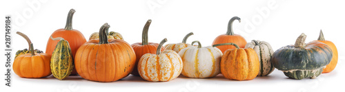 Poster Akt Assortiment of pumpkins on white