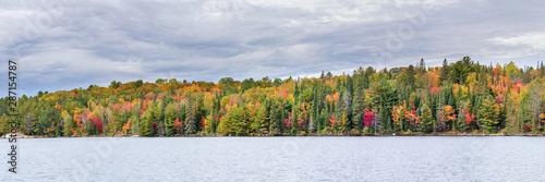 Photo Panoramique de la forêt canadienne pendant l'automne au bord d'un lac dans le pa