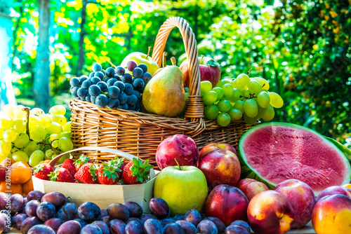 Cadres-photo bureau Nature Variety of fresh ripe fruits in the garden.
