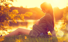Pregnant Woman Sitting On Gree...
